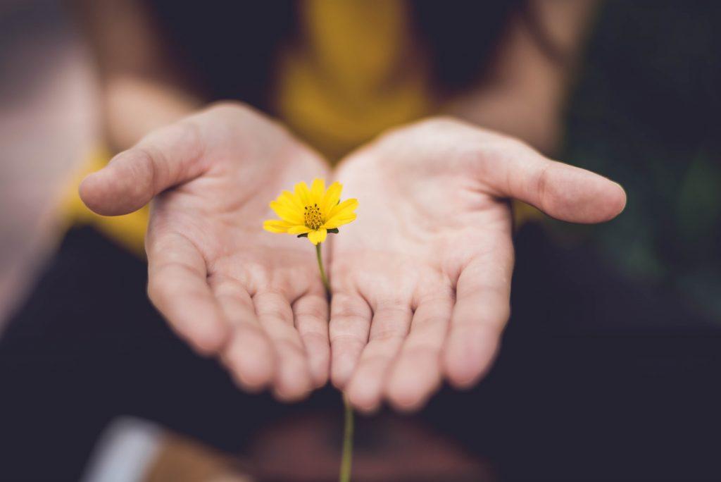 Nainen pitää kukkaa kämmenellä.
