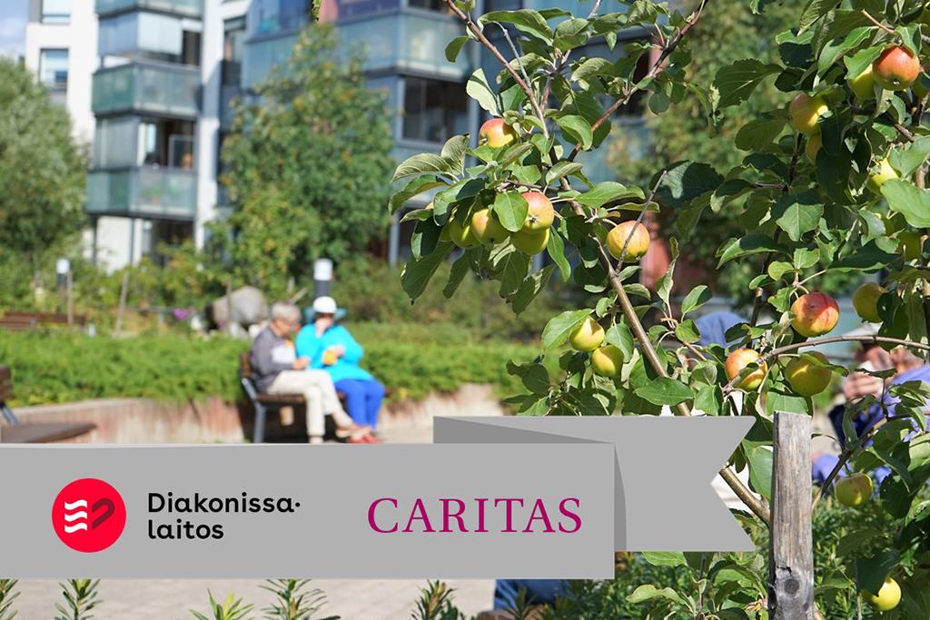 Caritas palvelut Oy:n toimipisteen piha-alue Oulussa.