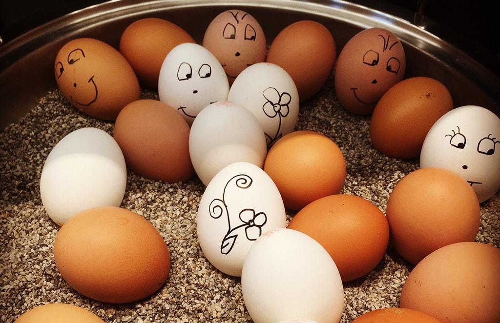 kananmunia, osa koristelu pääsiäiskoristeluin.