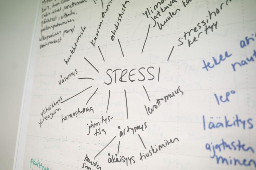Kirjoitettu kuvio, jossa eritellään stressin ilmenemismuotoja: väsymys, yliherkkyys, hermostuminen, jännitystila, ärtymys, levottomuus, ahdistuminen.