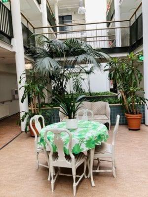 Pöytäryhmä suurien viherkasvien keskellä sisätiloissa.