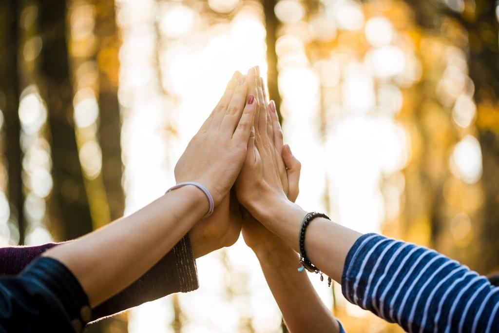 Neljä kättä lyövät yhteen ilmassa. Aurinko heijastaa takana puiden lomasta.